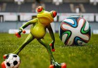 rana calcio